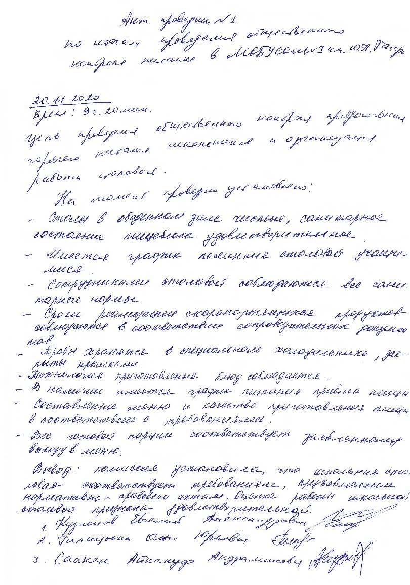 Акт проверки №1 от 20.11.2020